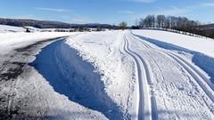 Langlaufloipe (Sanseira) Tags: bayerischer wald nationalpark schnee eis loipe ski skisport spur