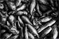 BLW (black legume & white)