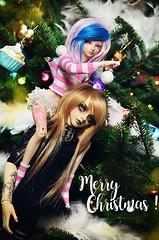 Merry Christmas ! n_n (Chantepierre) Tags: bjd balljointeddoll balljointed doll fairyland minifee karsh crobidoll lance legitdoll legit merry christmas joyeux noël chantepierre ladicius