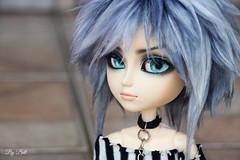 Battler (♪Bell♫) Tags: taeyang albireo battler garth weiss groove doll