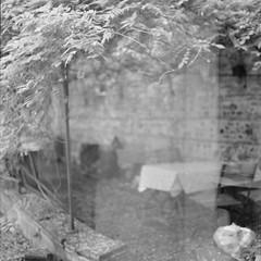 ... (Catherine...) Tags: hassie mediumformat 6x6 film analogue argentique memoryofsummer