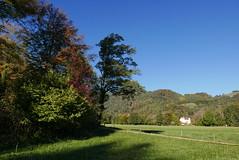 Herbst Niedernfels (Aah-Yeah) Tags: herbst niederfels piesenhausen achental marquartstein chiemgau bayern