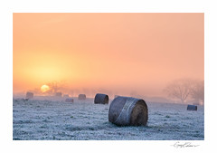 Frosted Bales III (George-Edwards) Tags: landscape frost ice haybales harvest autumn winter seasons cold sky sunrise cloud mist misty fog sun light daybreak dawn morning field meadow farmland trees grass straw corn crop outdoor countryside rural bucklebury marlston westberkshire pangvalley riverpang england northwessexdowns