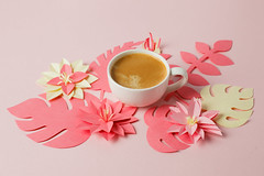white cup of espresso on a pink pastel background with modern origami paper craft decor flowers, concept of romantic breakfast (gogotomay) Tags: design decoration nature coffee flora flower summer art pattern beautiful spring application background pink breakfast branch cafe colorful monochrome coral live craft evergreen flatlay morning handcraft papercraft handmade natural origami palm paper plant pop top view tropical blossom monstera aromatic bouquet shadow 3d mother day valentine feminine romance floral elements