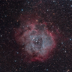 Rosette Nebula (agavephoto) Tags: square astrophotography astronomy space stars nebula oiii halpha cluster starcluster le tracking primefocus hydrogen starformation night sky nightsky ngc2252 ngc2246 ngc2237 ngc2238 sh2257