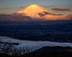 Fuji shining in the morning sun (shinichiro*) Tags: 20190113dsc2773 2019 crazyshin nikonz6 nikkorz2470mmf4s january winter fuji oyamacho shizuoka japan jp 紅富士 雲海 46722778522 candidate