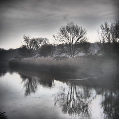 mist moment (photomaster22) Tags: square 1x1 holga mft nature trees river reflection water