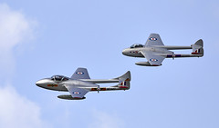 Vampires (Bernie Condon) Tags: dunsfold wingswheels airshow surrey uk aviation aircraft flying display norwegianairforcehistoricalsquadron dehavilland vampire fighter trainer rnoaf norwegian norway vintage historic preserved classic jet