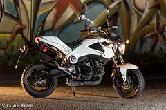 Honda MSX 125 (riccardomaffiodo) Tags: honda hondagrom msx hondamsx sb700 nikon d750 70200 f4 moto pitbike strobist akrapovic