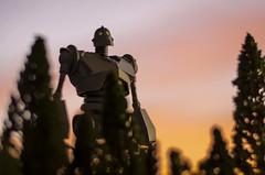 The iron giant (vicari8) Tags: iron giant meka gokin sentinel filippo sartoris action figure toy toys night amerian films anime catoons japan photo day celebrity persone nella foto andreavicariotto