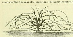 This image is taken from Page 397 of A treatise on the origin, nature, and varieties of wine : being a complete manual of viticulture and oenology/ by J.L.W. Thudichum and August Dupre (Medical Heritage Library, Inc.) Tags: wine making viticulture rcpedinburgh ukmhl medicalheritagelibrary europeanlibraries date1872 idb2198783x