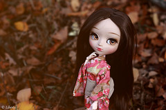 Autumn vibes (Liberty's dream) Tags: pullip pullipdoll doll vbp veryberrypop custo wig monique obitsu groove grooveinc autumn portrait photography pullipphotography