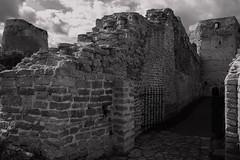 Izborsk fortress. Изборская крепость, фрагмент (oldTor) Tags: izborsk fortress samsung1855 monochrome oldtor outdoor landscape