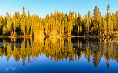 Morning in Sequoia National Park (nprisadnikov) Tags: california morning reflection forest lake montecito