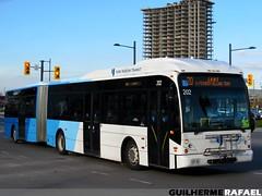 202 (Guilherme Rafael) Tags: van hool ag300 yrt york region transit