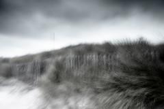 Enniscone (John Mee) Tags: black blackandwhite mono monotone monochrome ireland landscape irelandlandscape irelandseascape icm blur intentionalcameramovement winter mayo sligo