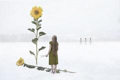 Spirit Of Summer (Nwywre) Tags: fineart art winter snow sunflower sonnenblume flower blume schnee conceptual surreal photomanipulation digiart girl blonde concept compostion