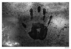 Hand print (Aljaž Anžič Tuna) Tags: hand print wet cold titanic moisture car autumn photo365 project365 onephotoaday onceaday 365 35mm 365challenge 365project art artist artistic nikond800 n nikkor nice nikon nikkor50mm 50mm 50mmf18 f18 d800 dailyphoto day b bw blackandwhite black white blackwhite beautiful