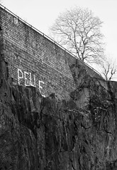 6Q3A7693 (www.ilkkajukarainen.fi) Tags: blackandwhite mustavalkoinen monochrome street art three puu wall seinä text teksti word sana stockholm tukholma harbour satama vikingline scandinavia eu europa