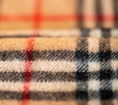 Winter gear (Peter Branger) Tags: macro macromondays cloth wool shawl burberry canoneosr canonef100mmf28lisusm