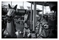 Meteor vs. Salomè (RadarO´Reilly) Tags: kirmes jahrmarkt funfair karussell merrygoround dortmund zechezollern sw bw blanconegro noiretblanc monochrome zwartwit framed street streetphotography