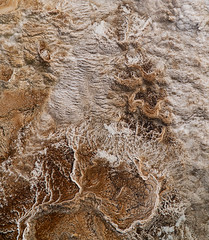 Volcanic Abstracts - Fall scenes from Yellowstone National Park, WY, USA (The Shared Experience) Tags: yellowstonenationalpark 2016 a6300 sonya6300 sonydslr nps nationalparks nps100 hotsprings geyser wild nature landscapes wildlife usa wy abstract texture