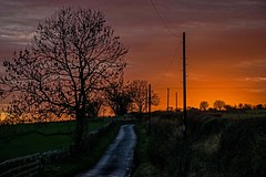 Country lane sunset (odell_rd) Tags: sunset northumberland road alnwick rugley coth coth5