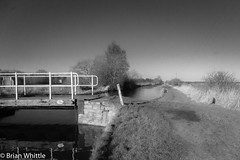 IMGP9333 (Brian H Whittle) Tags: blackwhite leedsliverpoolcanal rufford canal