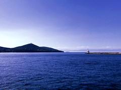 İstanbul (dobscuras) Tags: istanbul wave bird sky trip sun summer island sea