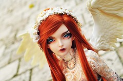 Noble (Chantepierre) Tags: bjd balljointeddoll balljointed doll fairyland minifee minifée sircca fc fullcusto full custo custom chantepierre ladicius