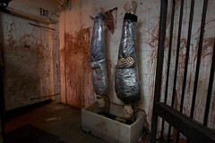 Blood Harvest (ShapesIndustries.com) Tags: hauntedbasement spooky halloween underground fear evil sets scenes stages displays exhibit attraction experience theater dark