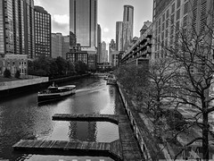 Departure (ancientlives) Tags: chicago chicagoriver chicagoparks river riverwalk riverboat cruise rivercruise rivereast downtown skyline skyscrapers city cityscape architecture buildings towers mono monochrome blackandwhite bw walking streetphotography november thursday 2018 autumn