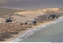 F-16C, A-37, F-5EM e A-1M ( (Força Aérea Brasileira - Página Oficial) Tags: 2018 a1m amx bra brasil brazil brazilianairforce cruzex cruzex2018 embraer f16c fab fighter forcaaereabrasileira forçaaéreabrasileira fotobiancaviol generaldynamicsf16cfightingfalcon mediaflight natalrn usa usaf aeronave aircrat airplane avião caça sobrevoo turbofan turbofanrollsroycespey807 voo