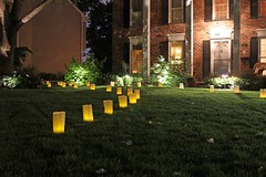 "Lights in the Front Yard • <a style=""font-size:0.8em;"" href=""http://www.flickr.com/photos/109120354@N07/44288175520/"" target=""_blank"">View on Flickr</a>"