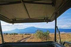Mt. Kilimanjaro in Tanzania as seen from Kenya (Herculeus.) Tags: framed 2018 clouds day dryseason kenya landscape landscapes metabonesnfemountt morning mountains mtkilimanjarokenya nikkorafsvr2485mmf28 nov outdoor outdoors outside sky sonya7rii 5photosaday grasslands masaimara