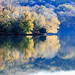 Radnor Lake (lxiao9990) Tags: reflection radnorlake tennessee