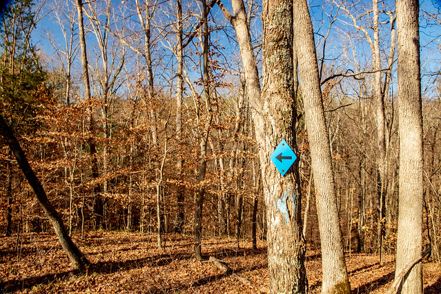 Hoosier National Forest - German Ridge Trail - November 21, 2018