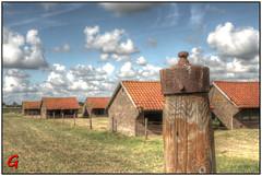 Bij de Abdij van Egmond (++Gerard++) Tags: egmondbinnen noordholland nederland nld abdij abby