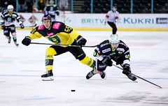 Conti-Cup Halbfinale - vs. GKS Katowice -15.11.2018