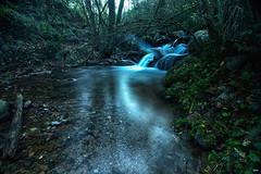 La curva (candi...) Tags: corriente riera agua saltodeagua bosque arboles piedras sonya77 naturaleza nature