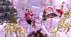 Christmas Hype (♥ Lucie ♥) Tags: christmas merry festive second life avatar campfire game animated candy cane trees forest snow white holiday sweater best friends sl creative creativity artistic slphotography slavatar virtual bento maitreya blogger