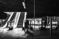my self (Rudy Pilarski) Tags: nikon nikkor d7100 dowtown design monochrome moderne modern architecture architectura line ligne structure nb bw bâtiment building reflet reflection escalator vitre verre upstairs urbano urban urbain france francia europe europa capitale 1020