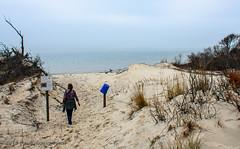 Sand Dunes & Beach @ Savage Neck Dunes NAP - Northampton County, VA (Paul Diming) Tags: dailyphoto naturalareapreserve beach chesapeakebay virginia pauldiming northamptoncountyvirginia northamptoncounty easternshore savageneckdunes peninsula delmarvapeninsula easternshorevirginia va winter