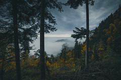 Moody day (raimundl79) Tags: wow weather wolke wanderlust wald explore exploreme entdecken earth explorer fotographie flickrexploreme flickrr follow4follow foto tamron2470mm travel d800 digital image instagram lightroom landschaft landscape ländle photographie perspective panorama österreich austria alpen myexplorer mountain nikon nikond800 new nebel fog bestpicture beautifullandscapes berge vorarlberg view cloud clouds cloudporn