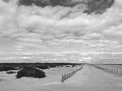 The Beach (jade2k) Tags: md usa assateague deserted teach fences