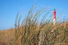 Jour d'automne — phare de la Coubre, Charente-Maritime, octobre 2018 (Stéphane Bily) Tags: stéphanebily charentemaritime phare lighthouse oyat france coubre