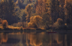 I have a dream.... (charhedman) Tags: deerlake canoeing autumncolours water trees reflections ihaveadream abba peaceful dreaming fall redcanoe people