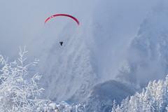 Hinterstoder (Chrifrie) Tags: winter schnee snow paragleiter paraglider flexwing visitaustria pyhrnpriel upperaustria