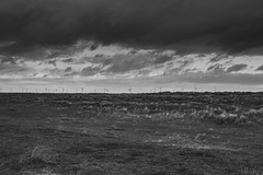 Wind Farm (connorjacobs1) Tags: east anglia norfolk england visitnorfolk broads black white myeastofengland canon camera user dslr lens sigma sigma1750mm f28 os exposure landscape flickr explore