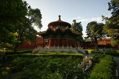 Imperial Garden (Simon Chorley) Tags: holiday beijing china chn geo:lat=3992005181 geo:lon=11639010748 geotagged jingshan